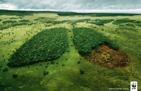 manifesti-anti-fumo-wwf-lungs